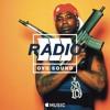 Gucci Mane Type Beat - End Up Dead | Hip Hop | [FREE MP3 DOWNLOAD] WWW.JAKKOUTTHEBXX.COM