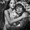 Love Theme (Romeo & Juliet - Andre Rieu)