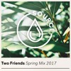Two Friends - Spring Mix 2017 - DANCE & HOUSE