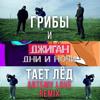 Download Грибы и Джиган – Дни и ночи тает лёд (Artemy Love remix) Mp3