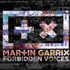 Martin Garrix - Forbidden Voices (KTYKT Remix)