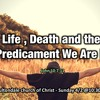 Life, Death, and the Predicament we are in ,  by Keith Stonehart