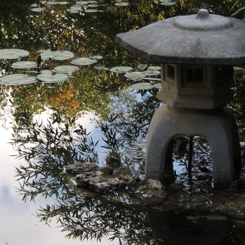 Brief Mindfulness Meditation