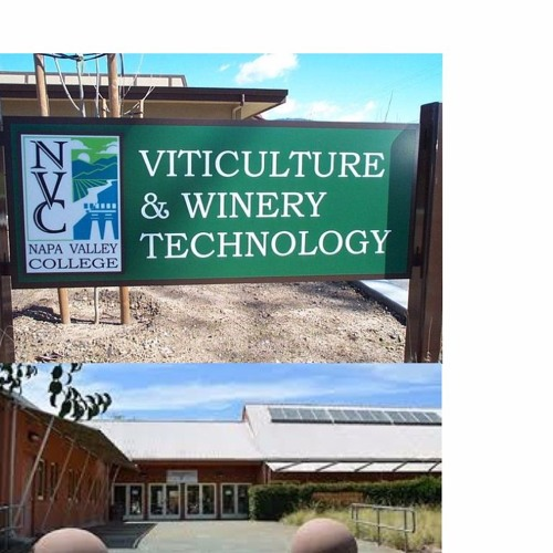 NVC Viticulture & Winery technology
