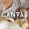 CANVAS Remix Mix