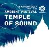 Sergei Emelyanov & Stanislav Afro – Temple Of Sound