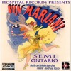 """Back To Magnolia"" By Semi Ontario"