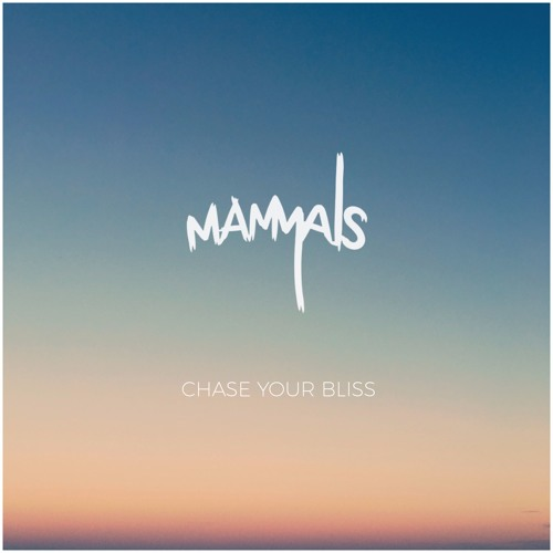 Chase Your Bliss EP