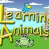 Let's Learn! - Animal Sounds for Kids(Podcast)