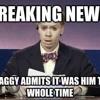 Shaggy - Wasn't Me (Harrjs Remix)