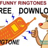 Kangaroo Ringtone With Download Link FUNNY RINGTONES ANIMAL RINGTONES