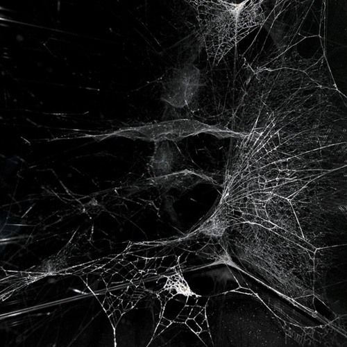 Spider's Web by Katie Melua