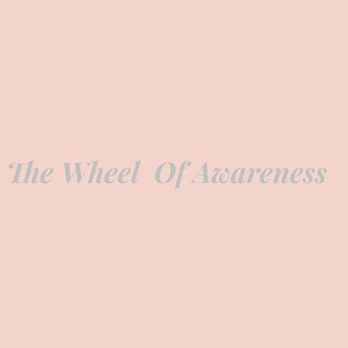 The Wheel Of Awareness