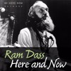 Ram Dass – Here and Now – Ep. 109 - The Five Invitations with Frank Ostaseski and Roshi Joan Halifax