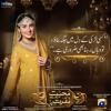 Mohabbat Tumse Nafrat Hai OST - Rahat Fateh Ali Khan