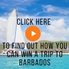 Ep2 In the travel know - Why you should BOOK Barbados and Fly