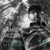 Patterns of Perception 15 - Jamie McCue