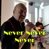 Never Never Never - Shirley Bassey - cover by Wim