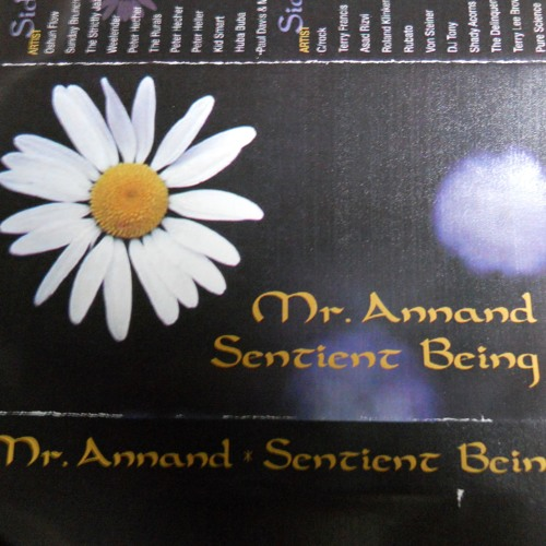 Sentient Being Mixtape by Mr. Annand May 1999