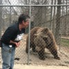 Wild Animals in Appalachia