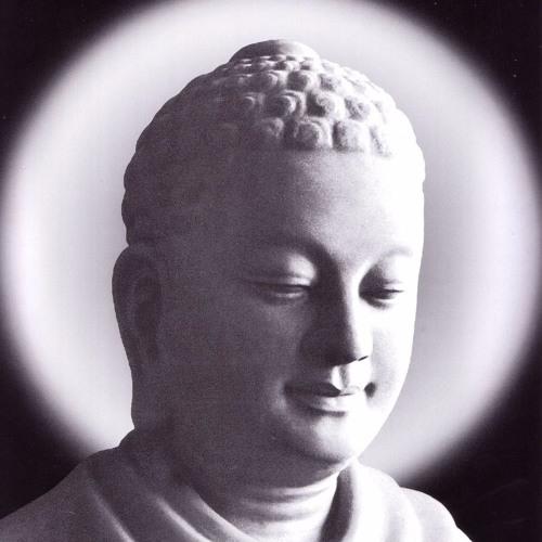 Phật Pháp Diễn Giảng Qua Kinh Tụng Pali - Sư Giác Nguyên