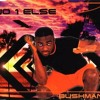 Bushman - No 1 Else (Radio Mix)