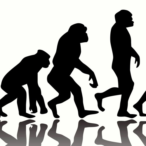 How should Christians Think About Hominids?