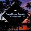 Deep House Sessions #1 - Dj Losing Control