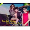 Cheez Badi - DJ RexBall Dance Remix