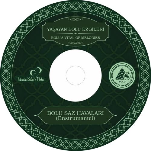 BOLU TÜRKÜLERİ CD 4 - Horan Havası