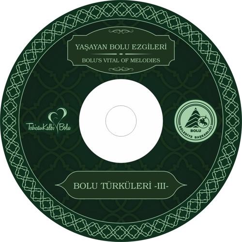 BOLU TÜRKÜLERİ CD 3 - A Benim Başı Şallım