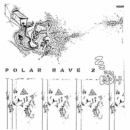 Polar Rave 2 (digest) / VA