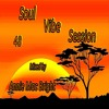 Download Soul Vibe Session 48 Mixed by Annie Mac Bright Mp3