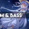 【Drum&Bass】Ravel Nightstar - The Drums And Bass Of Flower Bless