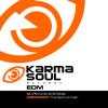 KSEDM004 - KARMA SOUL RECORDS - EDM - 5D Psychic Systems - The Spirit of India  - 96BPM