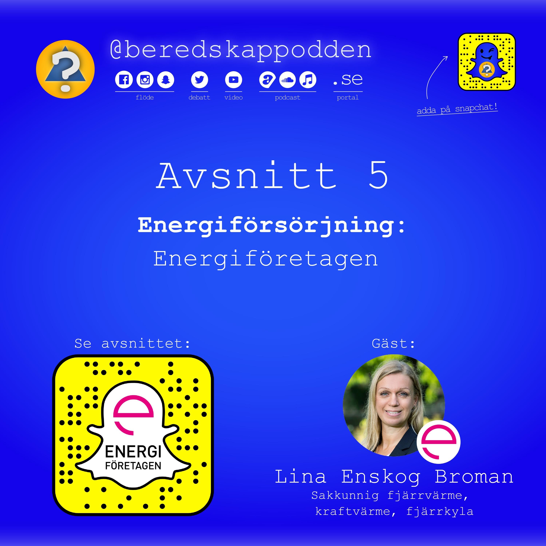 Energiförsörjning: Energiföretagen (branschorganisation) | Avsnitt #5