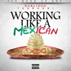 Download Barlidoe Tehrooni - Working Like A Mexican Mp3
