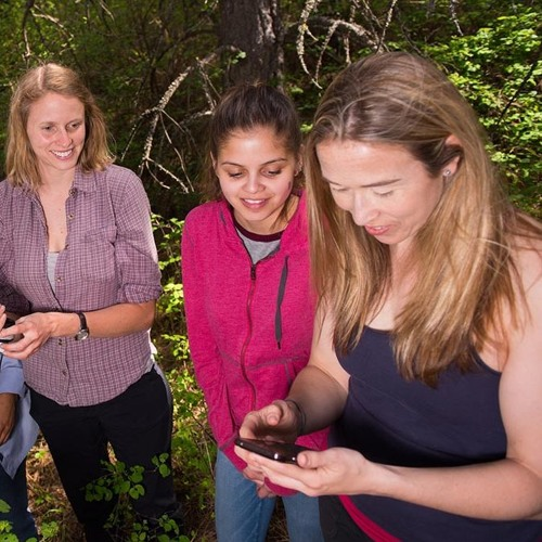 Palouse Science Spotlight 4/1/2017 Tara Hudiburg Forest Ecosystem Ecology