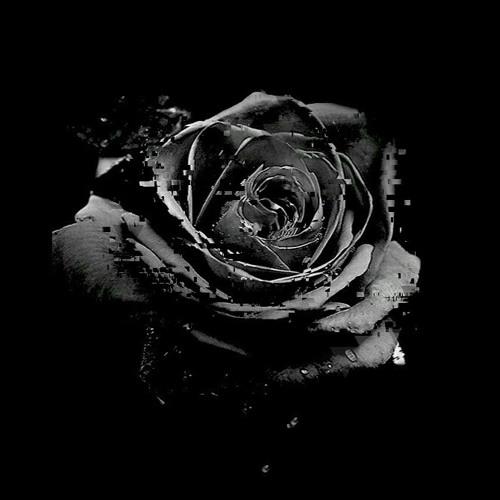 Rosa Negra RMX