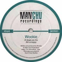 Down on me - Wookie