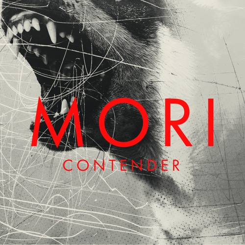 Contender [Single]