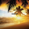 Sunshine Summer Beach Music And House 5