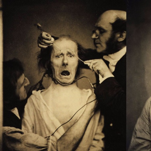 What can facial movement tell us about emotional expression? | Eva Krumhuber