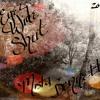 DESTRUCTION ( EYEZ  WIDE SHUT 2017) TORIE SHAE----REMASTERED ALBUM VERSION.mp3