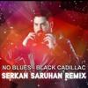 No Blues -  Black Cadillac (Dj Serkan Saruhan - Deep 2017 Remix)