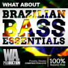 Brazilian Bass Essentials | 40 xFer Serum Presets, 130+ Drums, Kits & Melodies