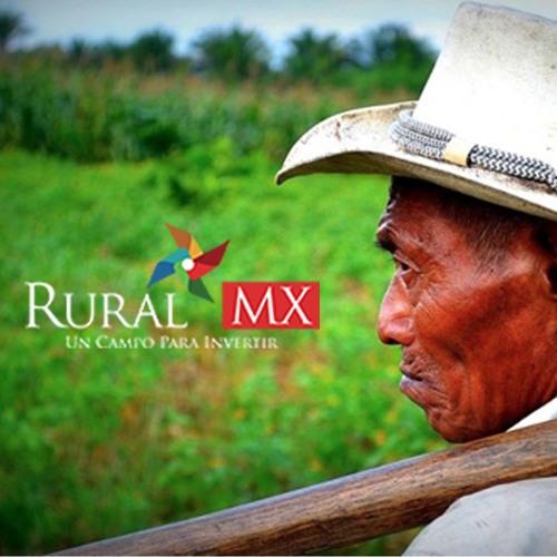 Rural MX