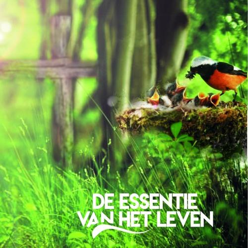 De Essentie Van Het Leven By Maurits Jan Westhoven On