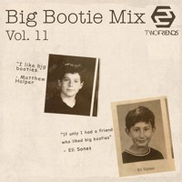 2F Big Bootie Mix, Volume 11 - Two Friends