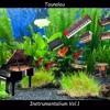 Tounalou No 078v4o3(32)